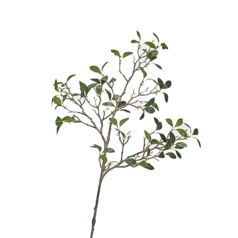 Frangipani branch - Set of 4