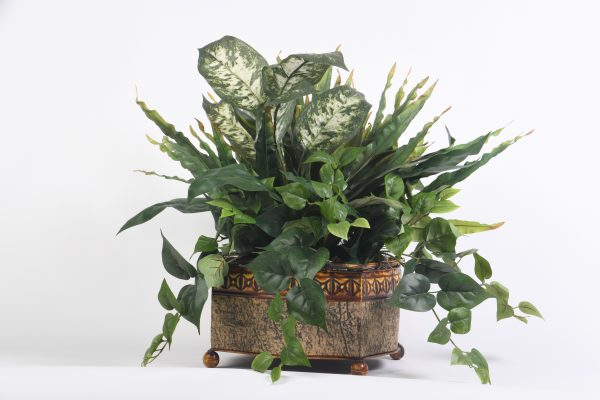 Ivy Greenery Mix in a Traditional Container