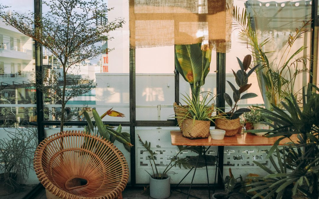 What Are The Benefits of Fake Plants?